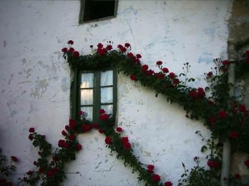 ventana primavera
